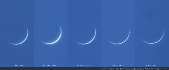 Venus rotating horns