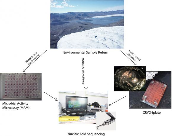 This image shows the instruments tested in the Life Detection Platform. Image: J. Goordial et. al.